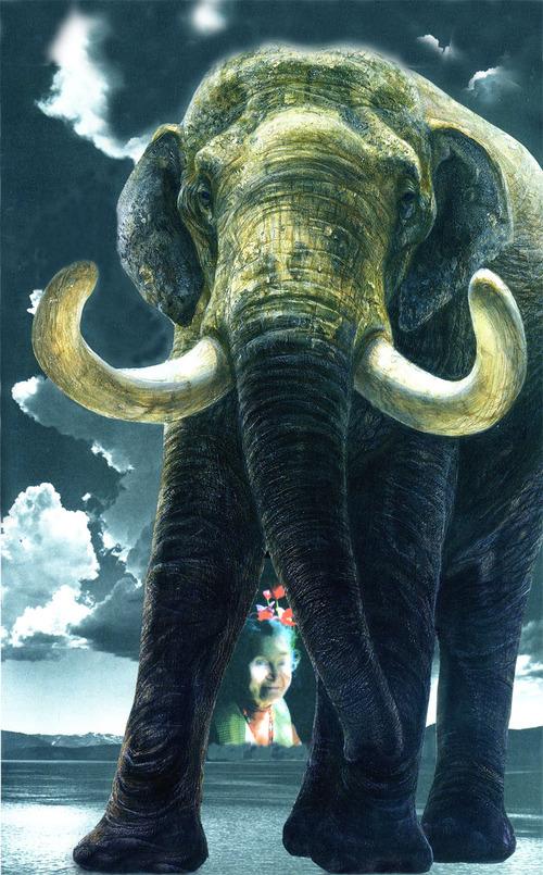Elephant_cardcopy